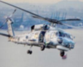 Seahawk image.jpg