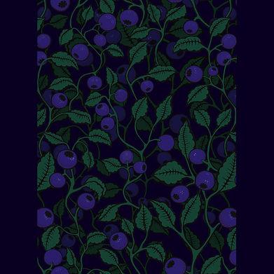 blueberries 30x30 navy.jpg