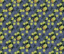 fruit pattern 2.jpg