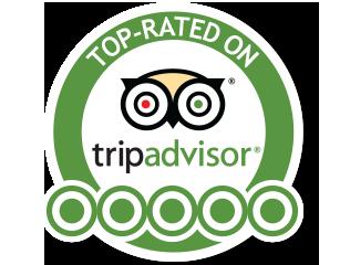 CalISpeed Exotic Car Drives and Tours NAPA 5 STAR Rated on TripAdvisor