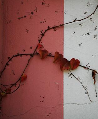 In parete