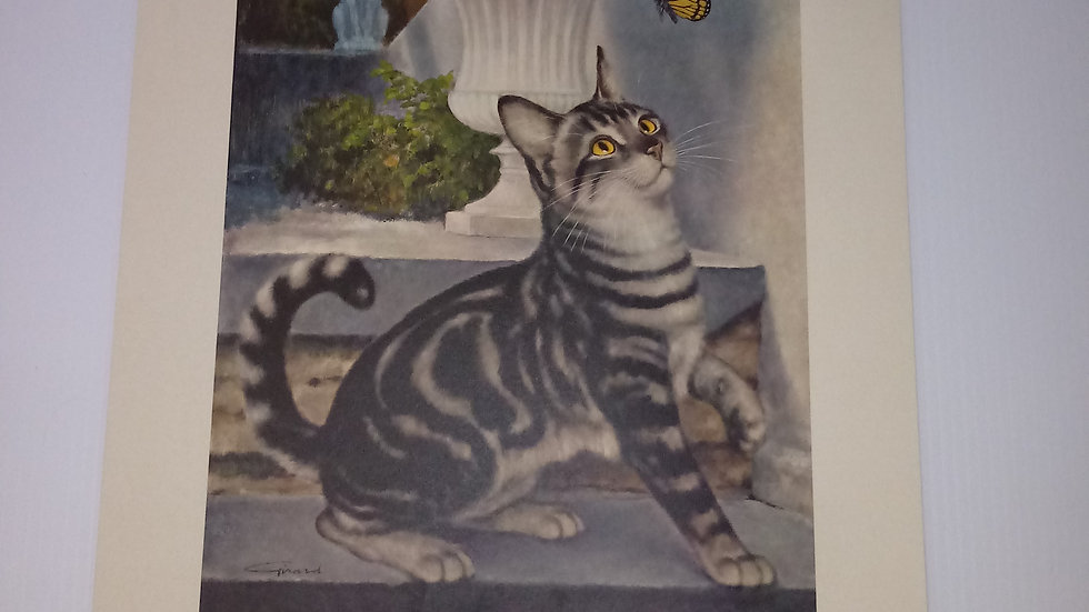 Silver Tabby Oil Painting By Girard Goodenow Womans Day 1965