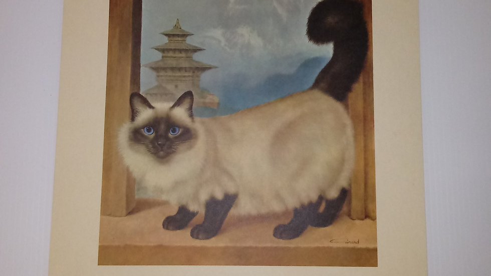 Himalayan Oil Painting By Girard Goodenow Womans Day 1965