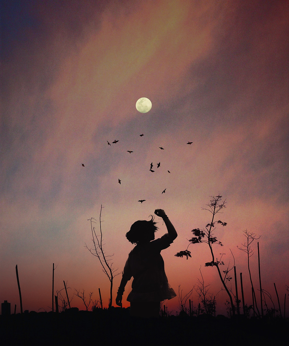 Céu ao anoitecer em campo aberto com uma criança e passaros