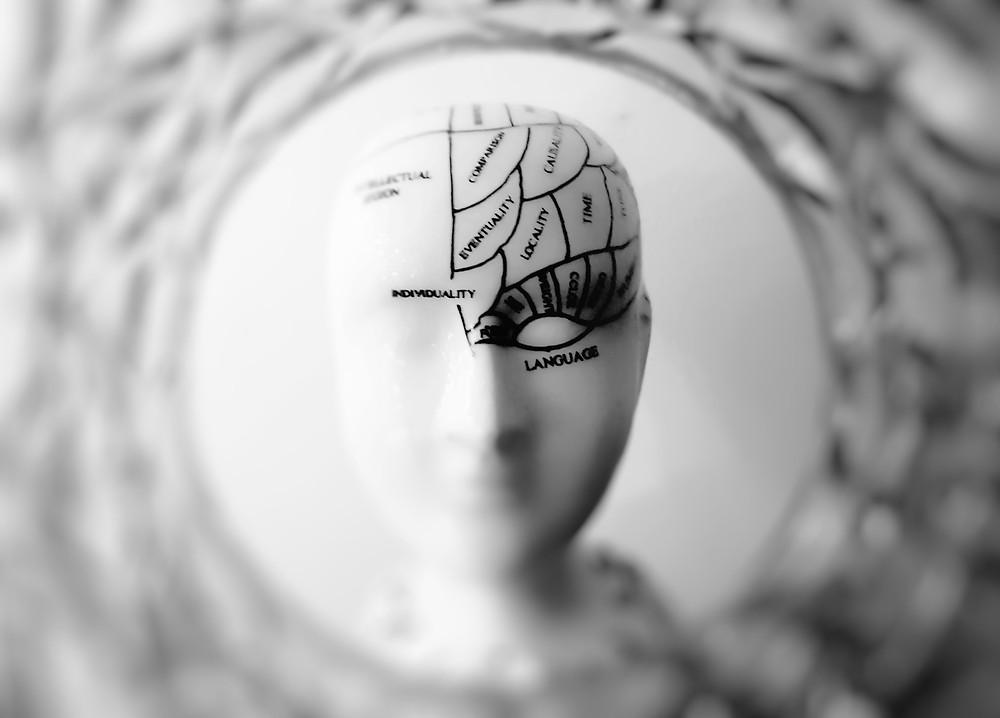 Cabeça de manequim com mapa do cérebro desenhado