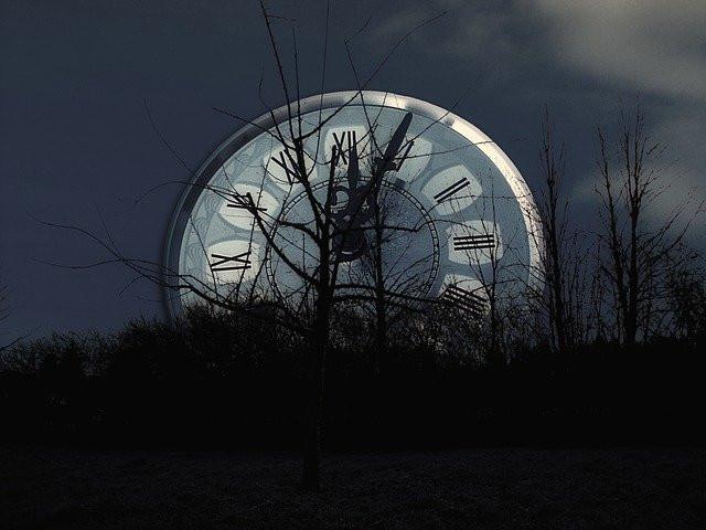 Relógio gigante em floresta