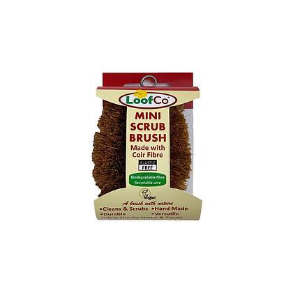 Mini-Coconut Dish Sponge