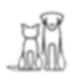 catdog_edited_edited.png