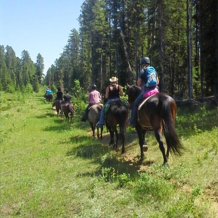 1/2 Hour Trail Rides @Wilderness