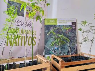 ¡Plantaremos 400 árboles!