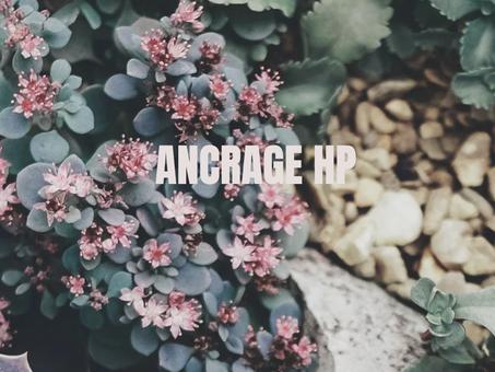 L'ANCRAGE HP