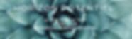 Capture d'écran 2019-02-06 à 14.35.46.pn