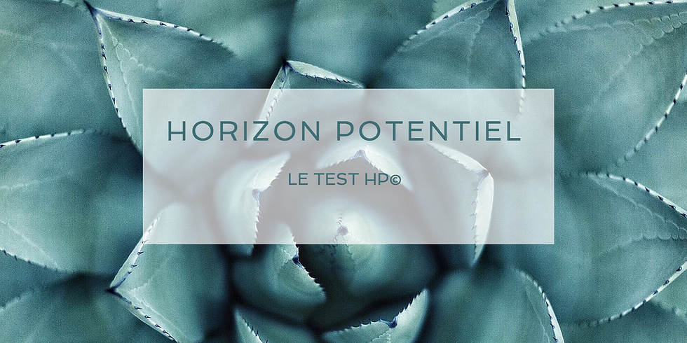 LE TEST HP© - ANIMATION CAROLINE BRISON