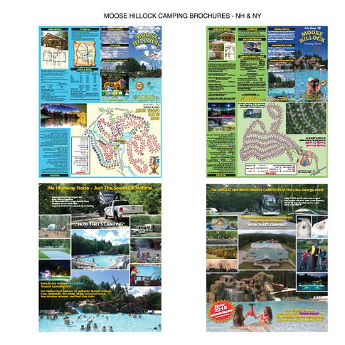 Moose Hillock NY and NH Brochures