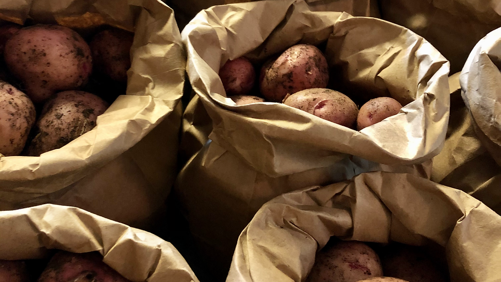 Pontiac Red Potatoes 3 lb