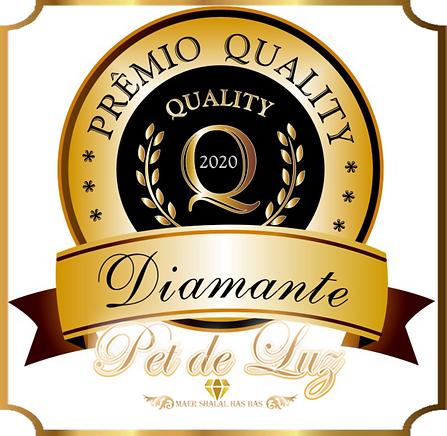 SELO DIAMANTE 2020 - PNG8.png