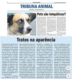 jornal.jpg