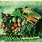 Natural Health New York City, Natural health NYC, Naturopathic Doctor New York, Naturopathic doctor Brooklyn, Alternative medicine, Nicole Weigl ND, natural medicine, naturopathic medicine, holistic nutritionist NYC, botanical medicine,