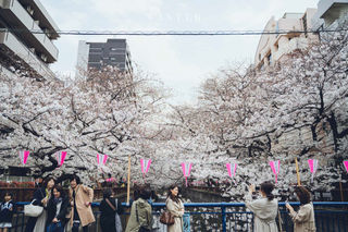 2019_03_28(東京)-12.jpg