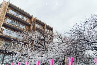 2019_03_28(東京)-44.jpg