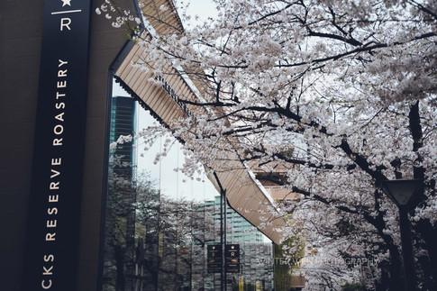 2019_03_28(東京)-91.jpg