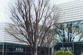 2019_03_28(東京)-68.jpg