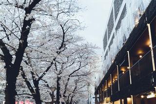 2019_03_28(東京)-166.jpg