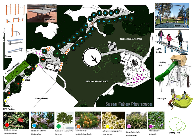 SusanFaheyPark_Final Plan_CCC-August 202