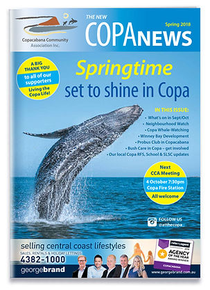 Copa-News-Spring.jpg