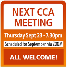 CCA-meeting-graphic Spring21.png