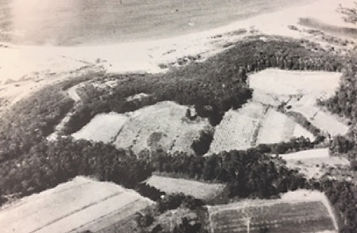 Chapman-Farms.jpg
