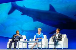 20150224170125 9509 TUE GENERAL SESSION - MGM SHARK TANK
