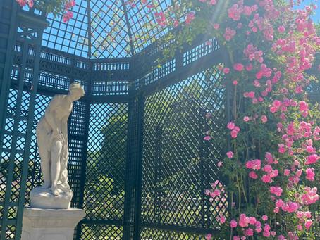 パリから近くの知られざる美しいバラの楽園
