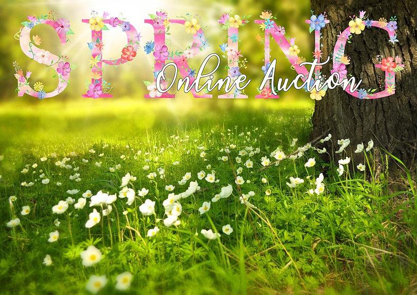 spring auction banner.jpg