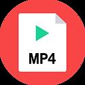 mp4-flat.png