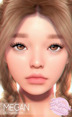 Palette - Megan Skin