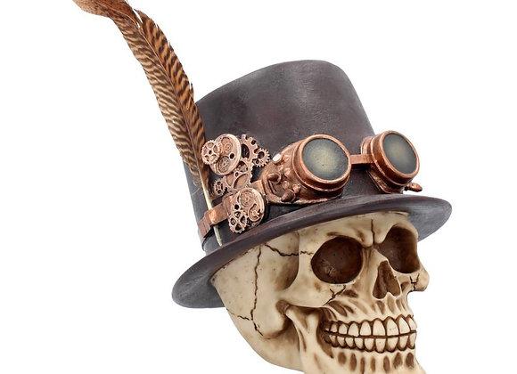 Aristocrat skull (18,5 cm)