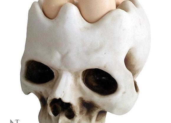 Egg Head Skull( 20 cm)