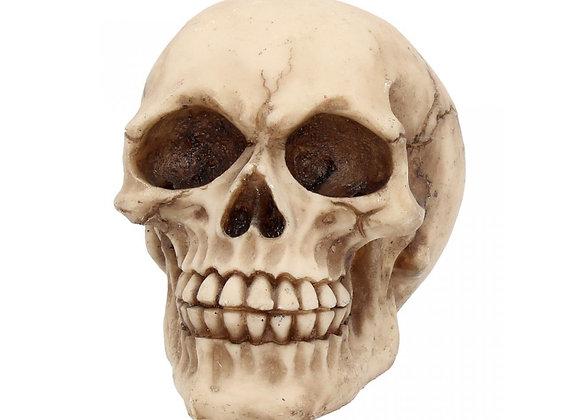 Joker skull (11cm)