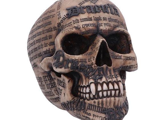 Dracula's Tale Skull (18cm)
