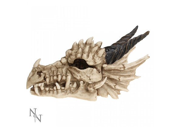 Dragon Skull Box (20cm)