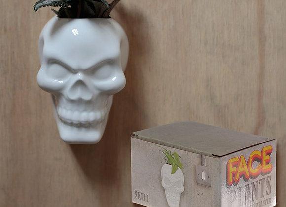 Skull plantenpotje