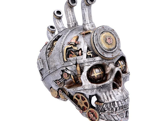 Pipe Dream Skull (19cm)