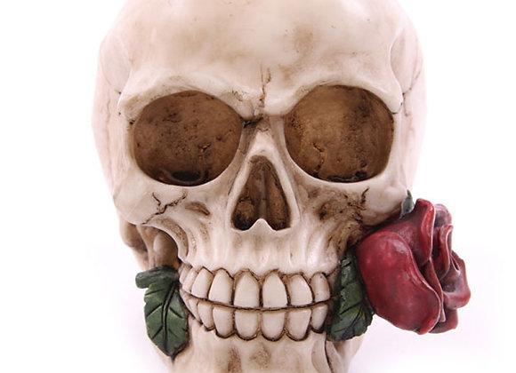 Rose from the Dead Skull (11 cm)