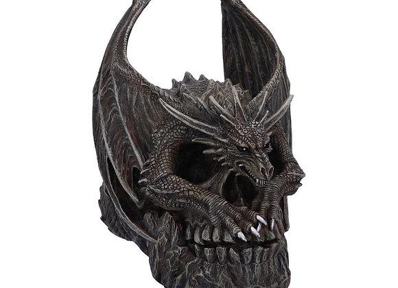 Draco Skull (19cm)