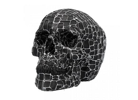 Neural Network Skull (18,5 cm)