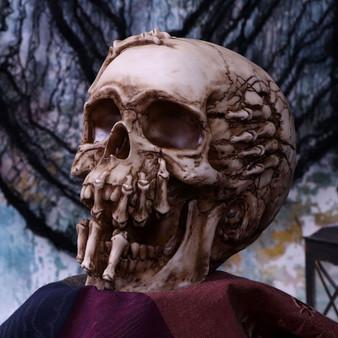 Breaking out Skull.jpg