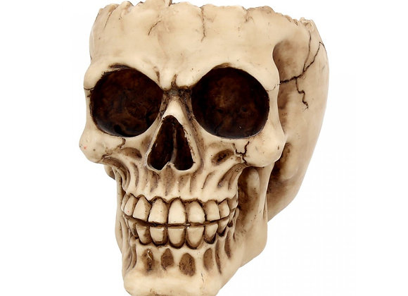 Lobo Skull (14cm)