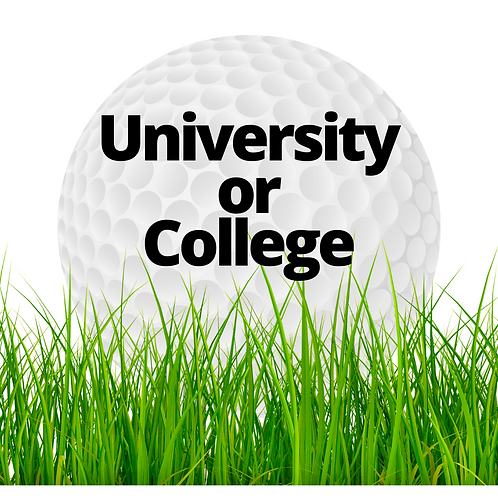 University or College (Under 25)