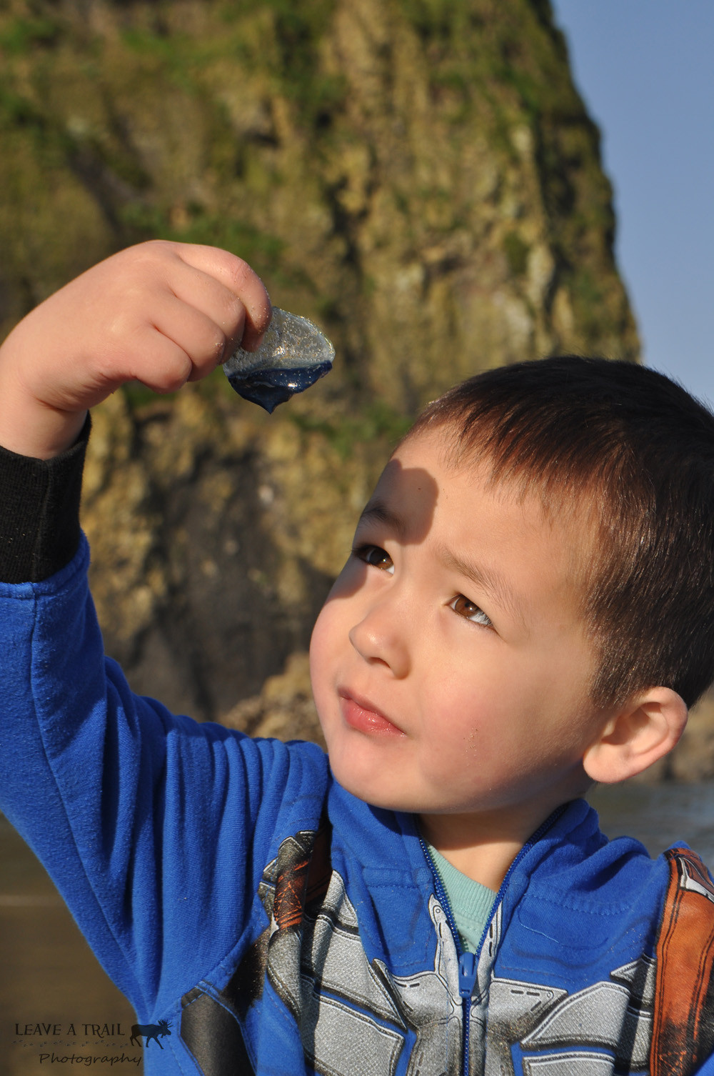 Ry checking out what the tide brought in - Velella
